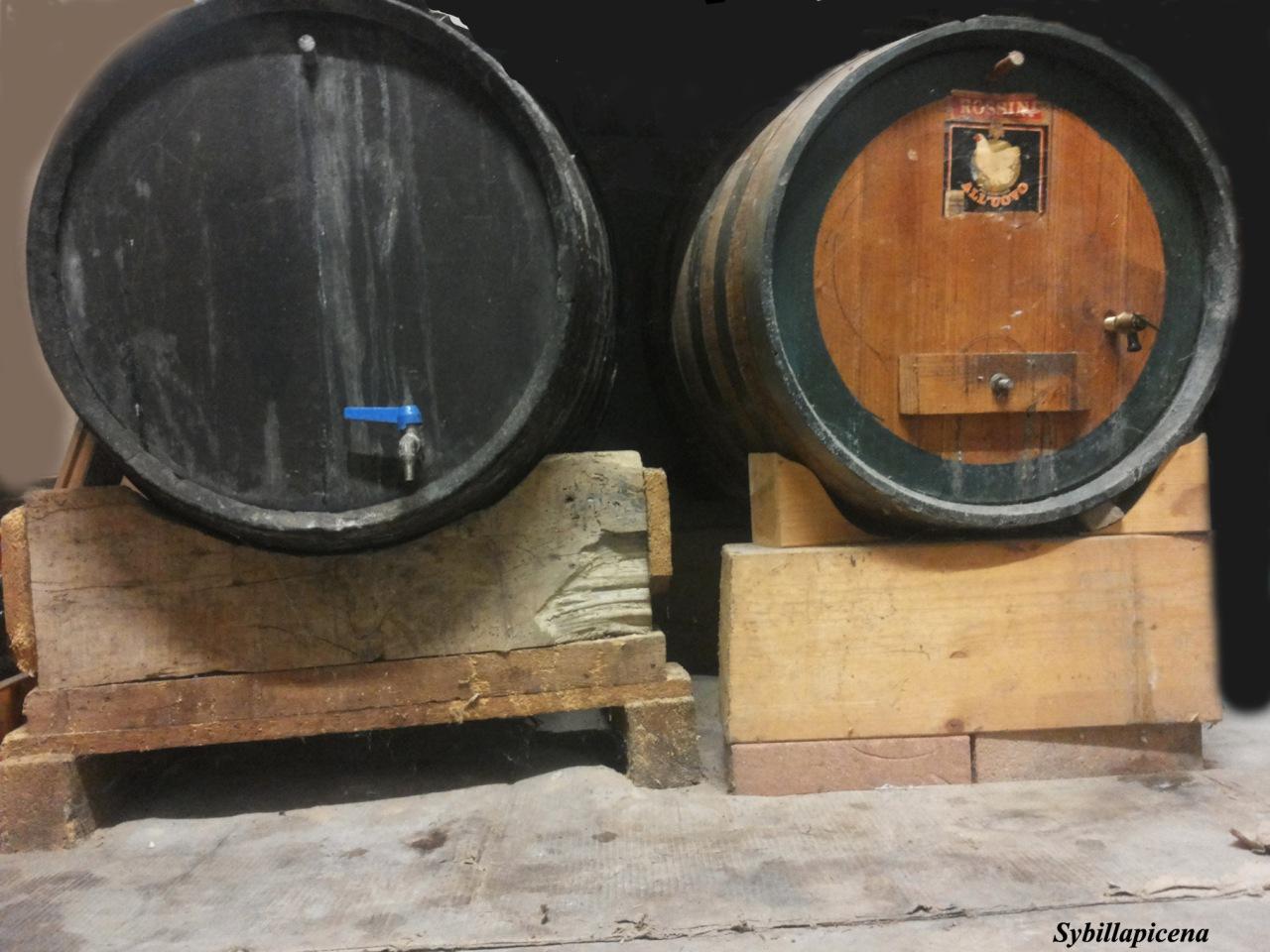 Botti contenenti vino cotto